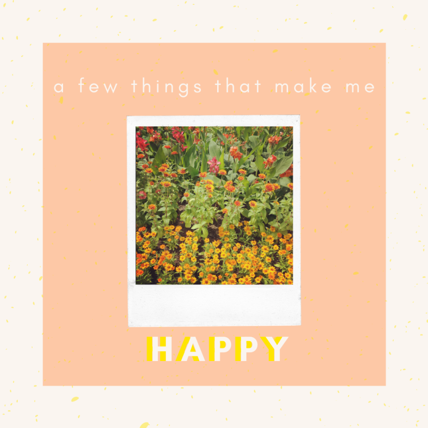 A Few Things That Make MeHappy: